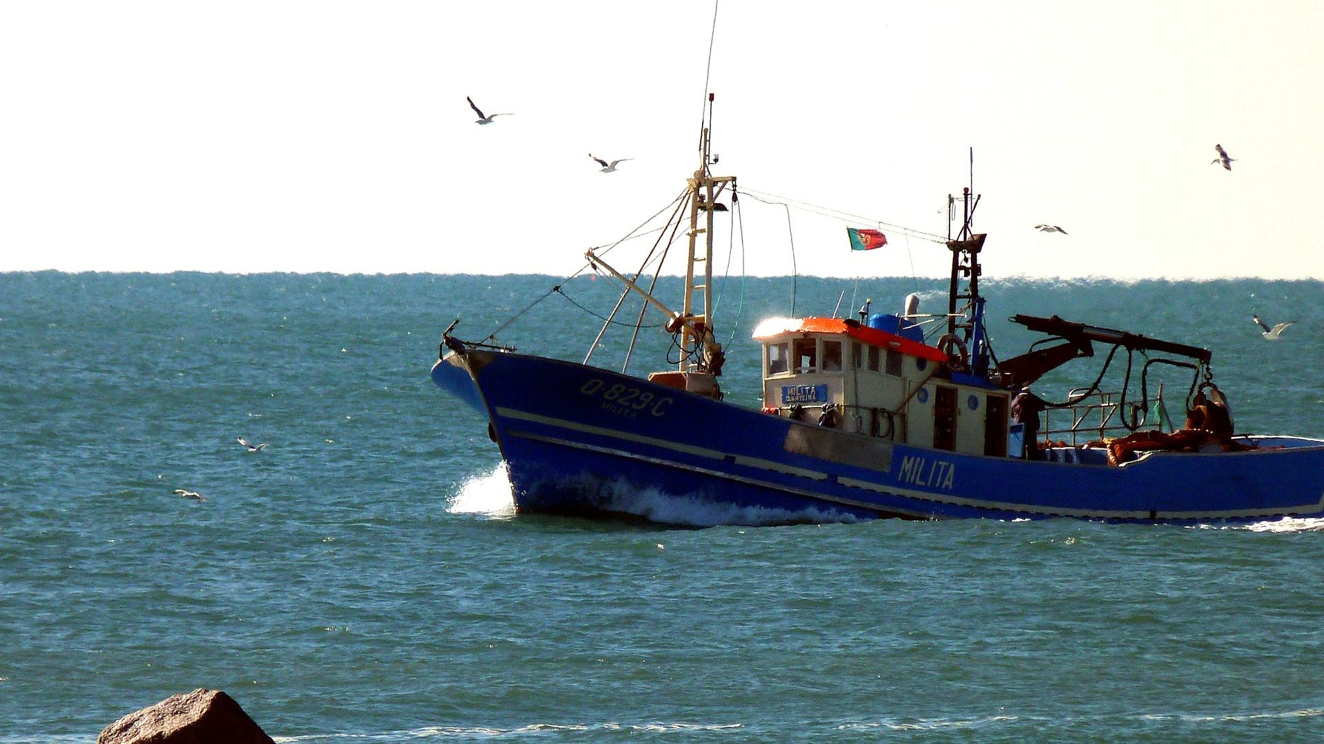 Governo garante que reembolso do fundo de pescas não está suspenso mas interrompido