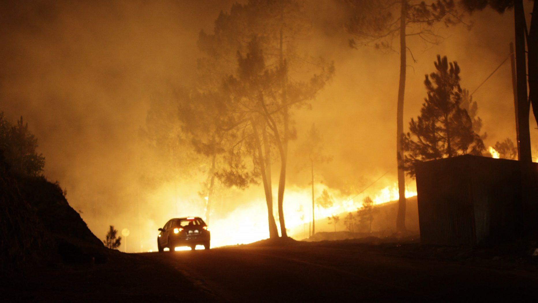 Incêndios: Apoios do Governo com impacto em 6.300 empregos