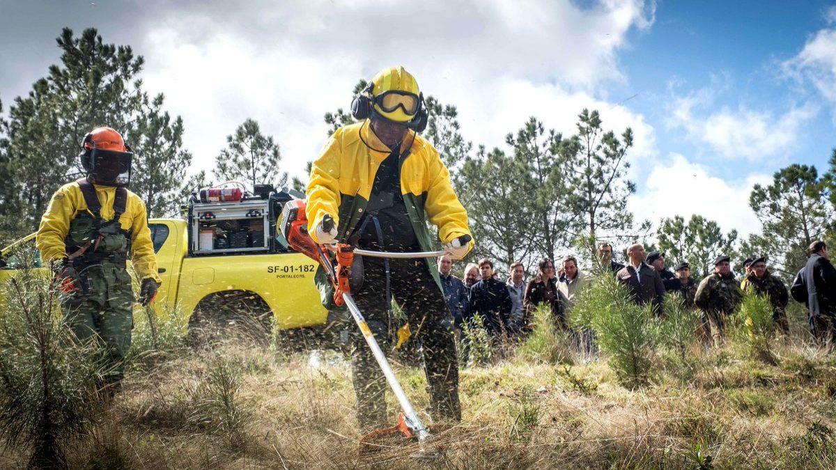 """Costa limita-se a ler """"humildemente"""" relatório dos incêndios"""
