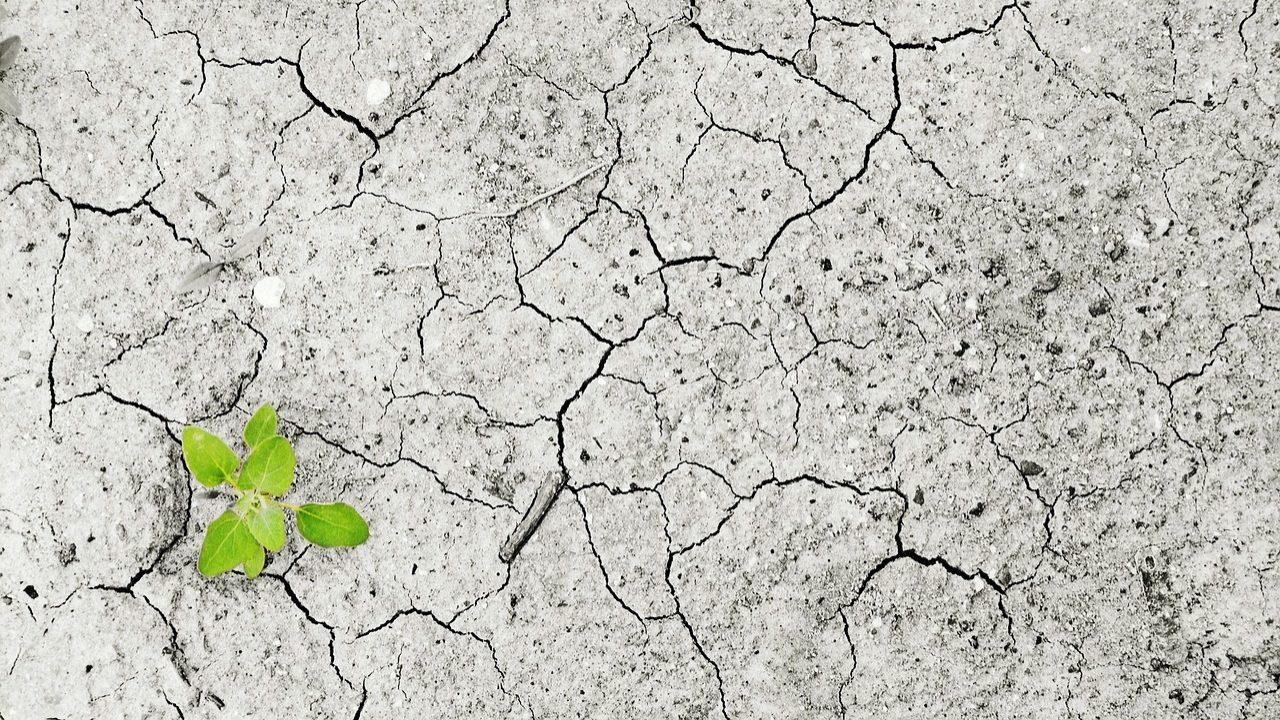 Portugal está no pódio europeu do combate às alterações climáticas