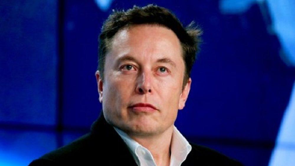 Tribunal autoriza Tesla a derrubar floresta na Alemanha